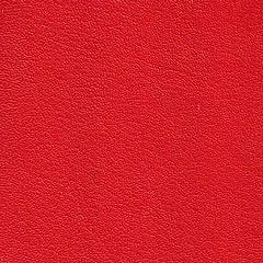 Pele Sint�tica / Cor Vermelho
