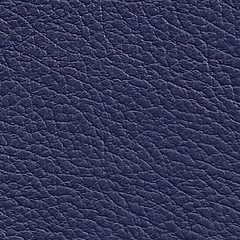 Pele Natural/ Azul R.514 =