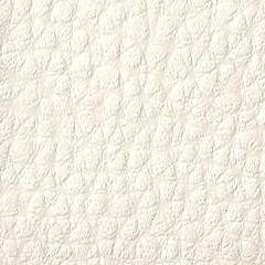 Pele Sint�tica / Cor Branco 501 Orapel (Foto)