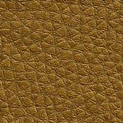 Pele Sintécica / Dourado 64 Orapel