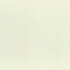 Branco (Foto)