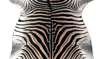 Tapete Pele de Zebra